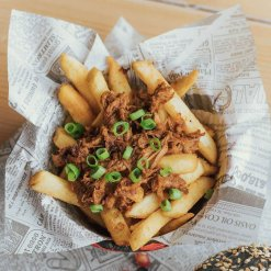 Fries and Pulled Pork